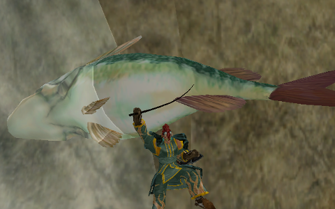 MoE エンシェント トラベラーを釣り上げたナムルさん